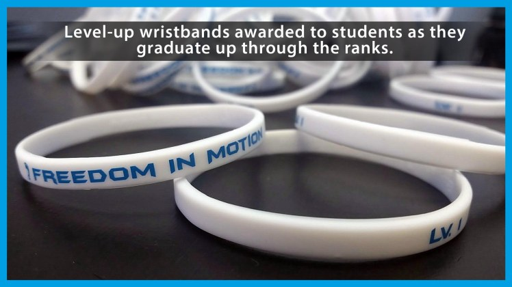 Wrist Bands explain.jpg